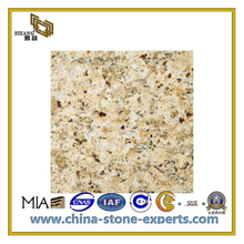 New Venetian Gold Granite Countertop for Kitchen or Bathroom(YQC-GC1009)