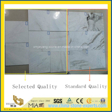New Stone-Blanco Carlsberg/Castro White Marble Tile for Floor & Wall (YYCV)
