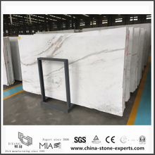 Durable New Arrival Arabescato Venato White Marble for Bathroom Tiles (YQW-MSA052601)