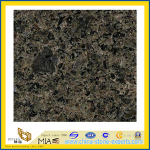 Polished Green Granite Slabs for Wall Tile / Countertops (YQZ-G1006)